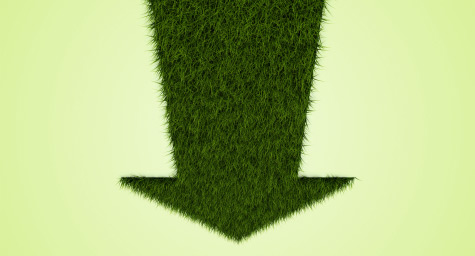 The Wilting Sales Of Green Products