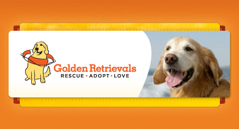 MDG Unleashes New Branding and Website for Golden Retrievals