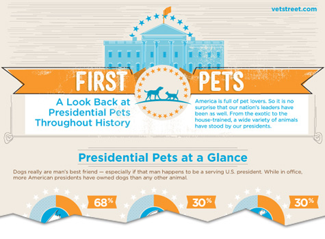 presidential pets a look back at presidential pets throughout history infographic cutoff