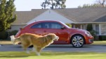 Car_Marketers_Drive_Views social video sharing