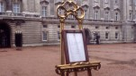 Royal Baby Announcement Easel