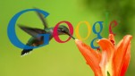 googles-hummingbird-update