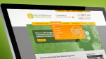Brain Balance Acheivement Centers web design