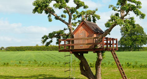 Imaginative Ad Campaign for Nabi DreamTab Takes Root in a Tree House Theme