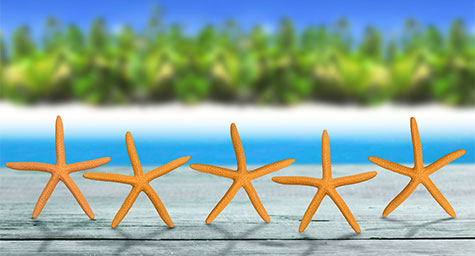 Make Room for Reviews to Bring In Hotel Bookings
