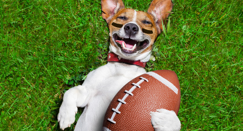 Would You Rather Score 2.5 Billion Online Impressions or a Single Super Bowl TV Ad?