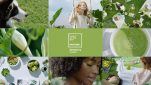 Pantone's Color of the Year Has Other Colors Green with Envy